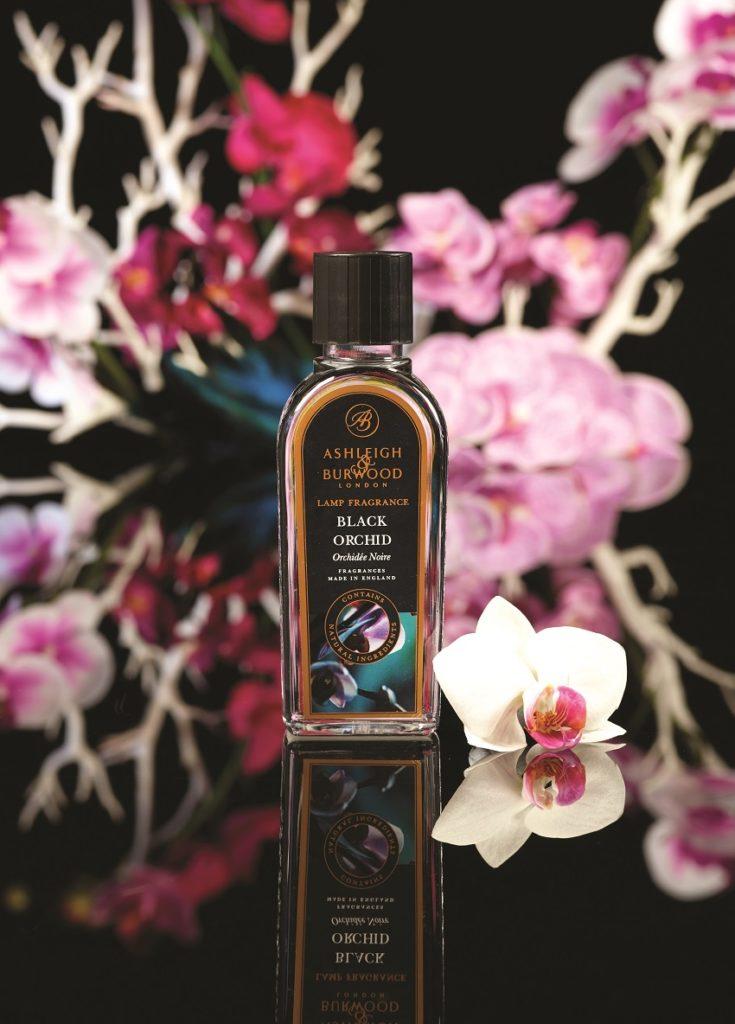 PFL Black Orchid_P klein
